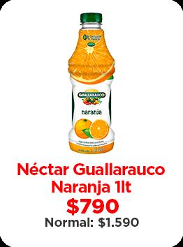 Néctar Guallarauco Naranja